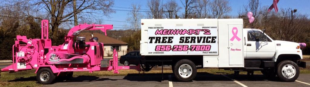Meinhart-Pink1
